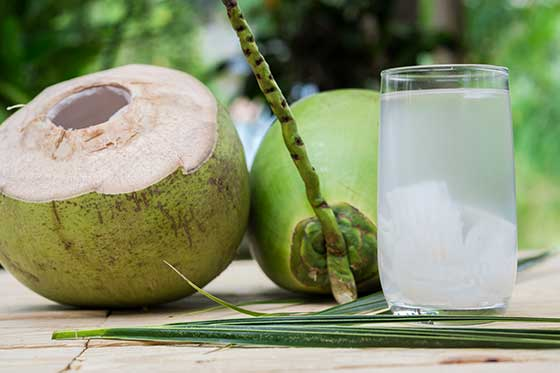 Eau de coco produit La Maison du coco photo samurai Oasis