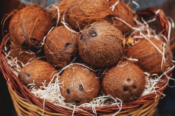Coconut vinegar La Maison du coco product
